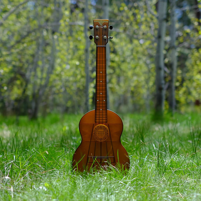 Outdoor Ukulele Tenor Brown